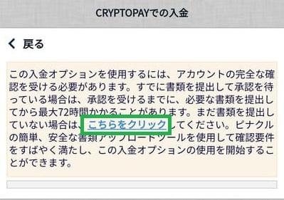 ピナクル入金方法09