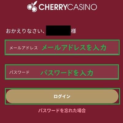 チェリーカジノの入金方法02