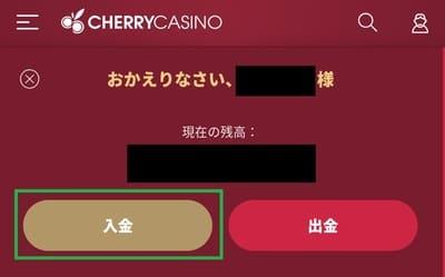 チェリーカジノの入金方法03